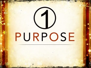 1purpose_t_nv