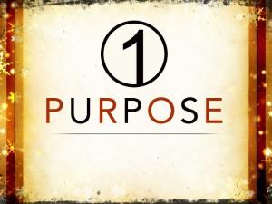 1purpose_t_nv